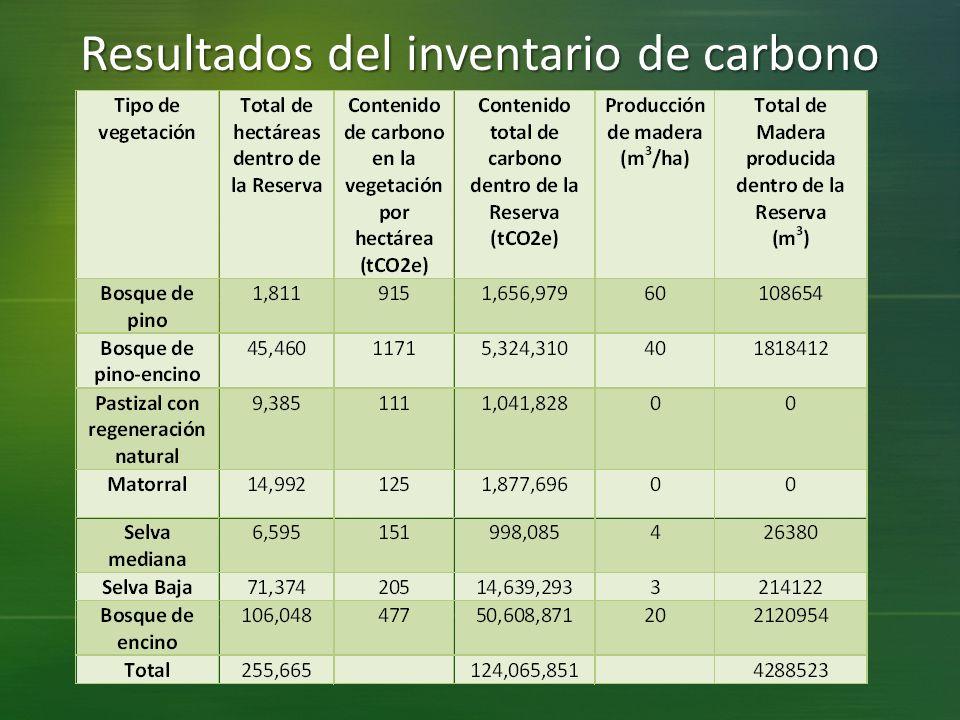 Resultados del inventario de carbono