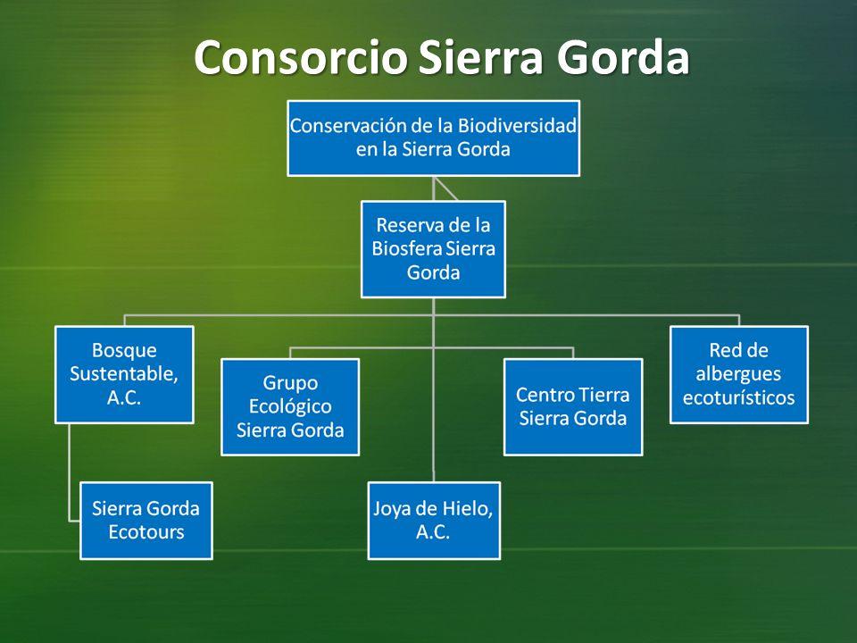 Consorcio Sierra Gorda
