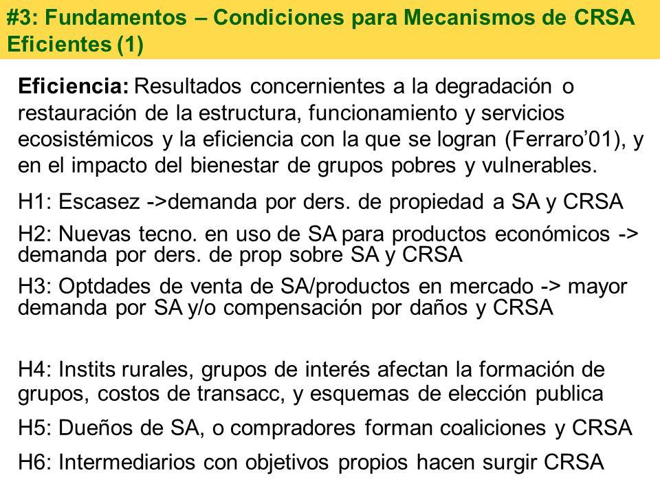 #3: Fundamentos – Condiciones para Mecanismos de CRSA Eficientes (1)