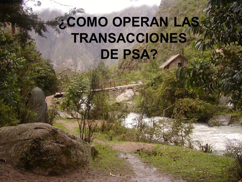 ¿COMO OPERAN LAS TRANSACCIONES DE PSA