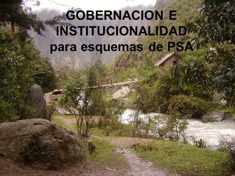 GOBERNACION E INSTITUCIONALIDAD para esquemas de PSA