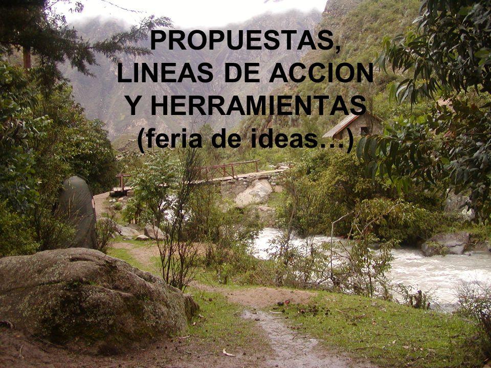 PROPUESTAS, LINEAS DE ACCION Y HERRAMIENTAS (feria de ideas…)