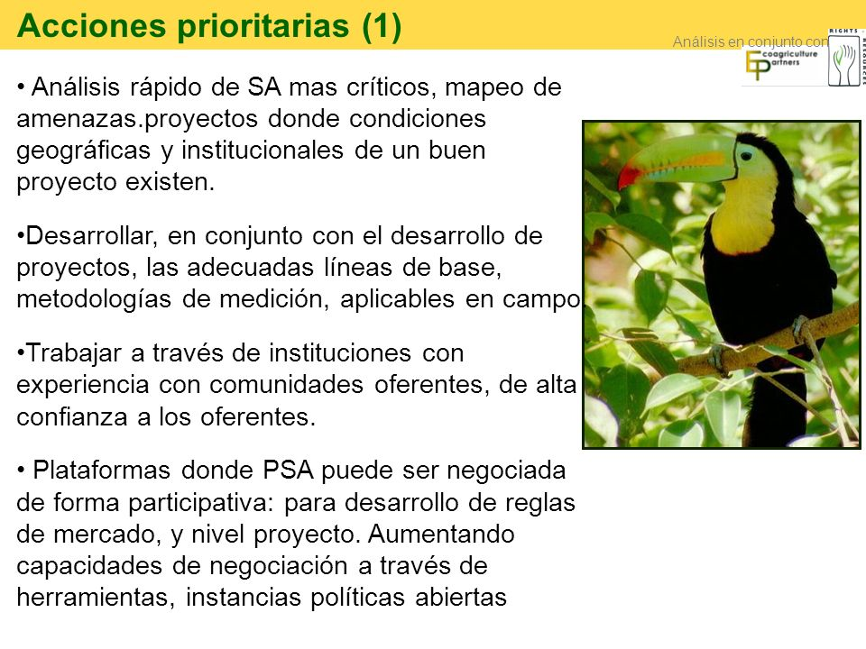 Acciones prioritarias (1)