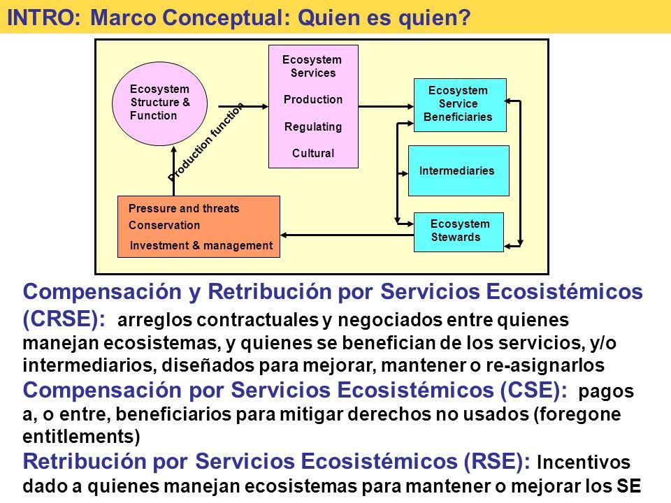 INTRO: Marco Conceptual: Quien es quien