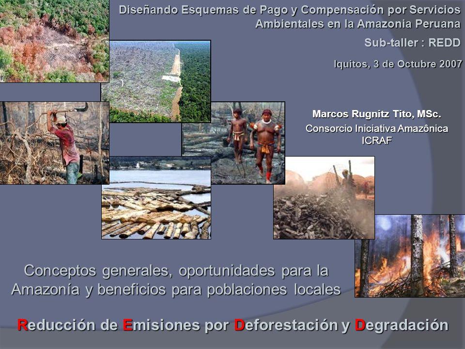 Reducción de Emisiones por Deforestación y Degradación