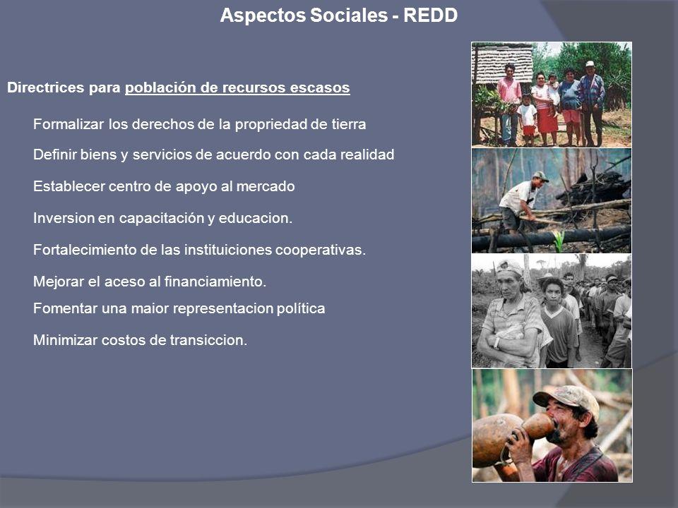 Aspectos Sociales - REDD