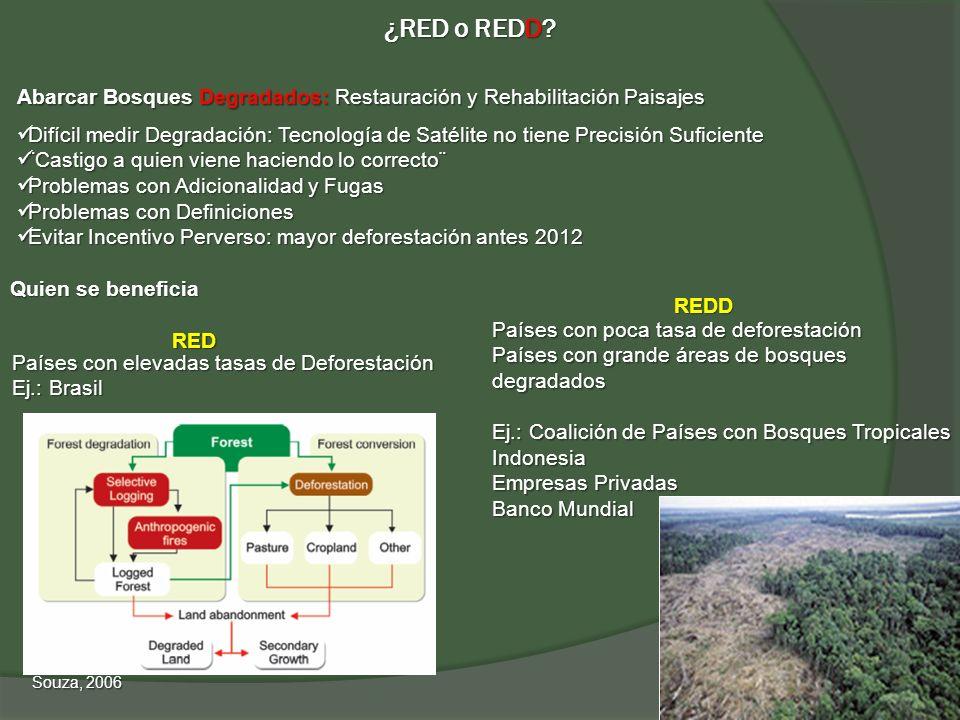 ¿RED o REDD Abarcar Bosques Degradados: Restauración y Rehabilitación Paisajes.