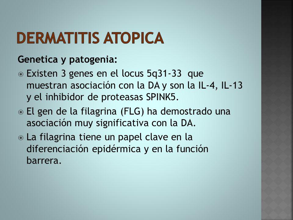 Dermatitis atopica Genetica y patogenia: