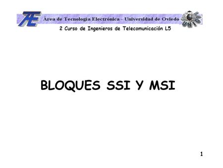 BLOQUES SSI Y MSI.