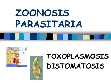 TOXOPLASMOSIS DISTOMATOSIS