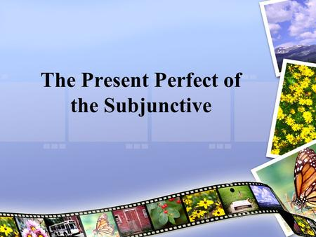 The Present Perfect of the Subjunctive. Present Perfect of the Subjunctive The present perfect subjunctive refers to actions or situations that may have.