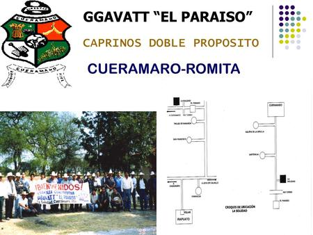CAPRINOS DOBLE PROPOSITO