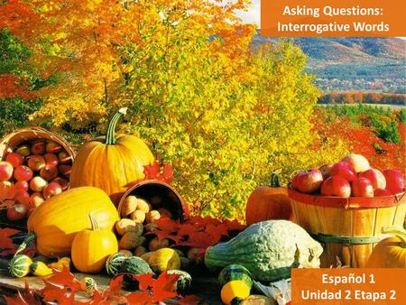 Asking Questions: Interrogative Words Español 1 Unidad 2 Etapa 2.