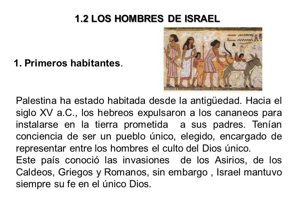 1 2 Los Hombres De Israel 1 Primeros Habitantes Palestina Ha Estado Habitada Desde La Antigüedad Hacia El Siglo Xv A C Los Hebreos Expulsaron A Los Ppt Descargar