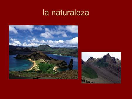 La naturaleza. la población There are 13.2 million people living in Ecuador. The majority of the population is mestizo (mixed blood) (65%), followed by.