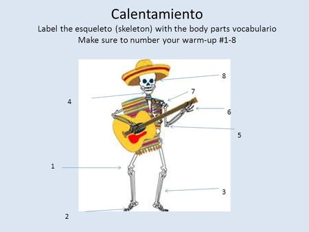 Calentamiento Label the esqueleto (skeleton) with the body parts vocabulario Make sure to number your warm-up #1-8 1 2 3 4 5 6 7 8.