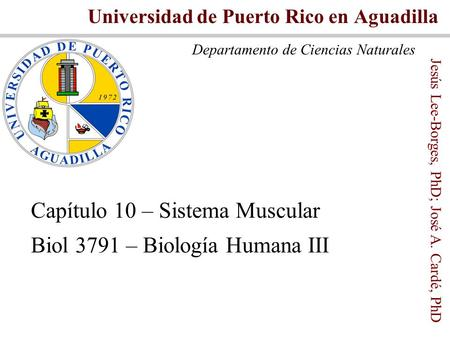 Capítulo 10 Tejido Muscular I Biol 3791 UPR – Aguadilla - ppt video ...