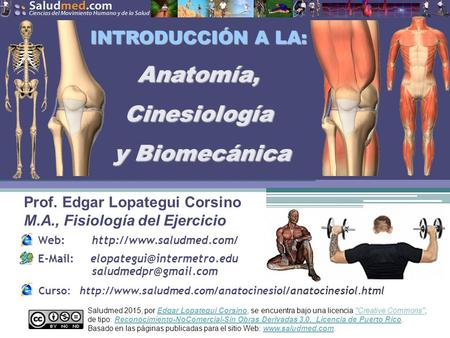 Anatomía Funcional -Introducción- - ppt descargar