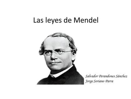 Leyes De Mendel En 1865 Gregor Mendel Publica Sus Trabajos