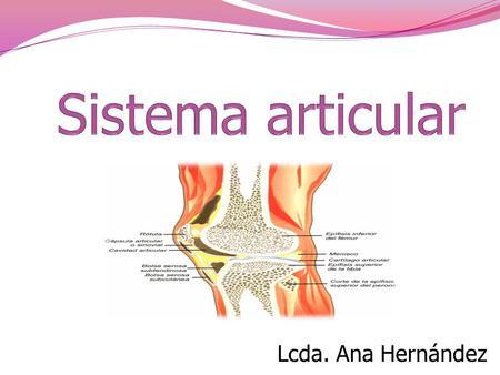 El esqueleto Los músculos Las articulaciones - ppt video online ...