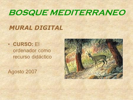 BOSQUE MEDITERRANEO MURAL DIGITAL