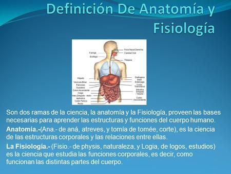 Introducción a la Anatomía y Fisiología Humana - ppt video online ...