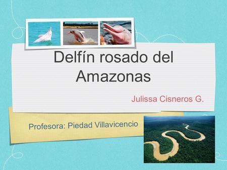 LOS DELFINES 21-T Francisco Jose Navarro Ojeda - ppt video online ...