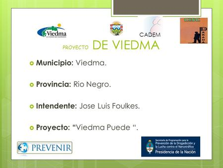 "Intendente: Jose Luis Foulkes. Proyecto: ""Viedma Puede ""."