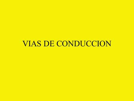 VIAS DE CONDUCCION.
