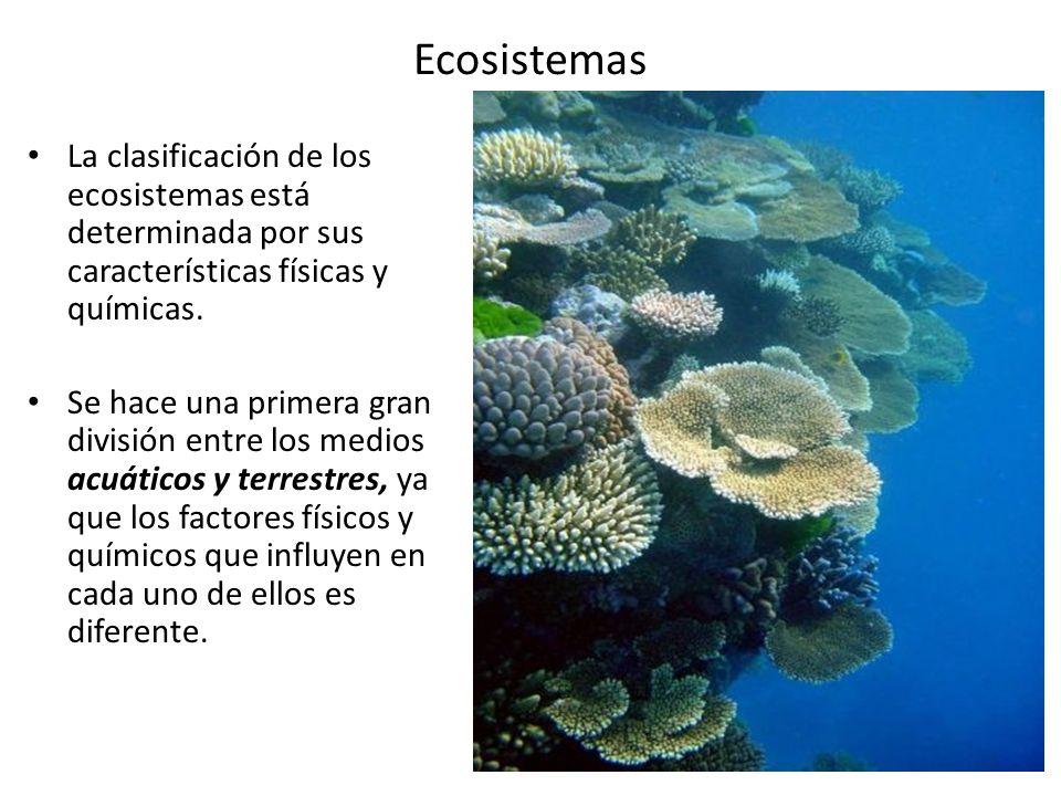 Ecosistemas La Clasificación De Los Ecosistemas Está Determinada Por Sus Características Físicas Y Químicas Se Hace Una Primera Gran División Entre Los Ppt Video Online Descargar