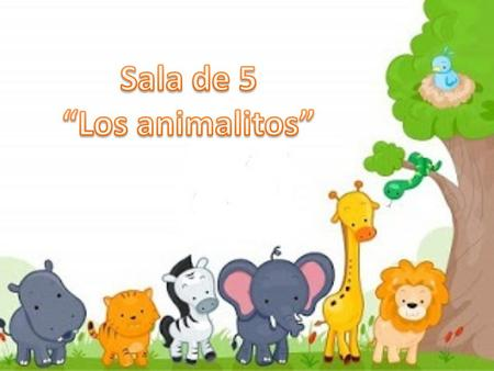 "Sala de 5 ""Los animalitos""."