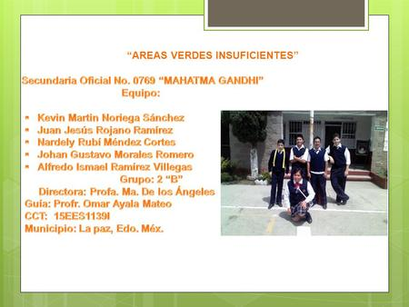 """AREAS VERDES INSUFICIENTES"""