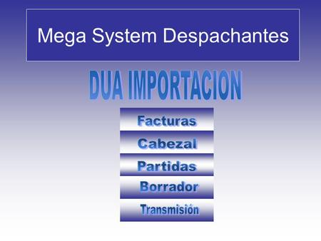 Mega System Despachantes