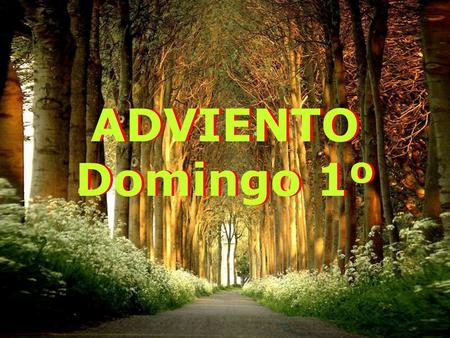 ADVIENTO Domingo 1º.