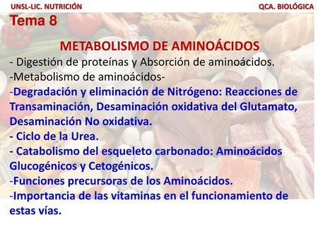 aminoácidos glucogénicos diabetes en niños