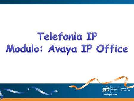 Modulo: Avaya IP Office