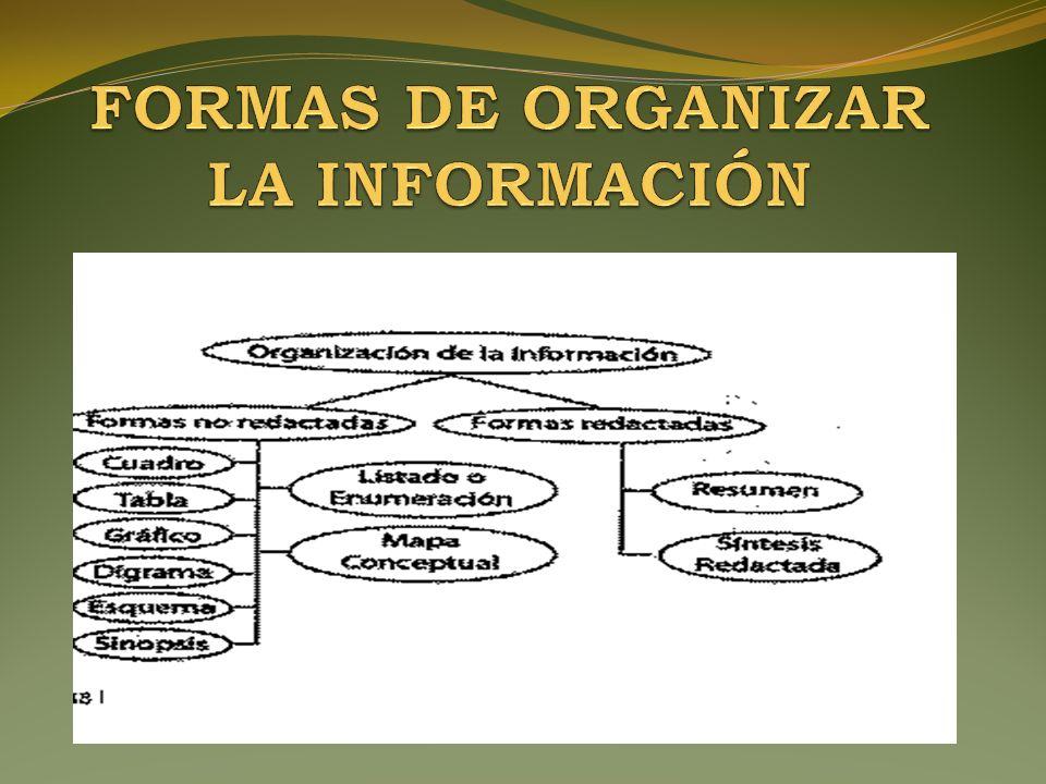 Formas De Organizar La Información Ppt Descargar