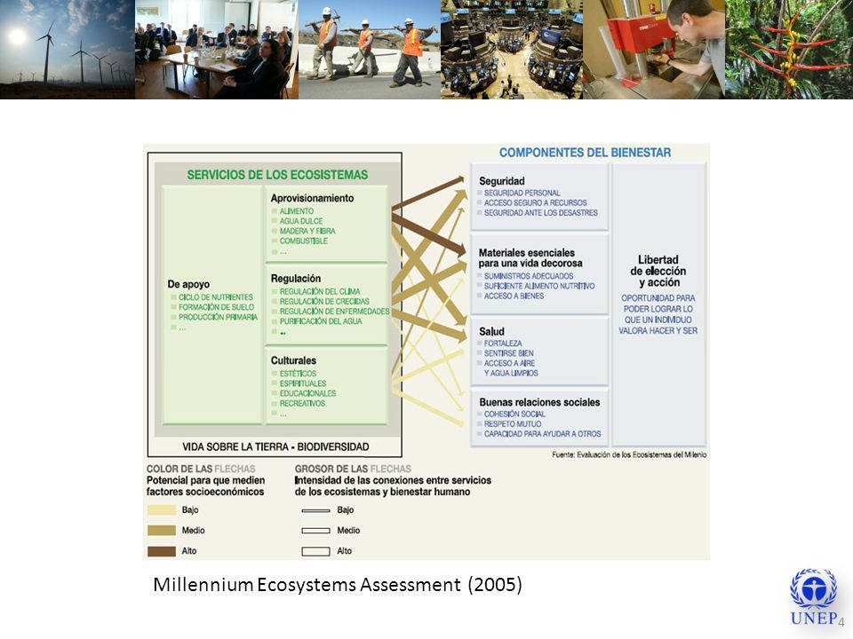 Millennium Ecosystems Assessment (2005)