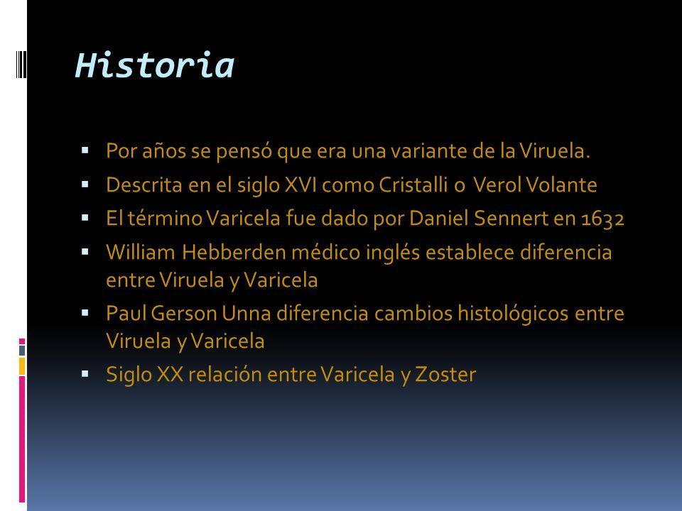 Varicela Zoster Enfermedades Infecciosas Escuela De Medicina Ppt