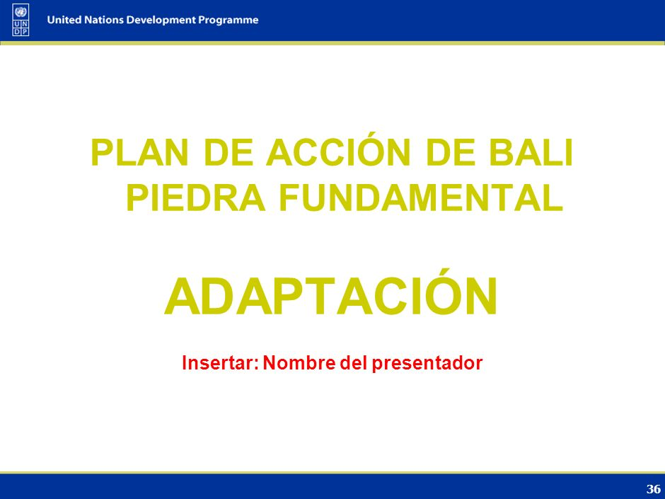 ADAPTACIÓN PLAN DE ACCIÓN DE BALI PIEDRA FUNDAMENTAL