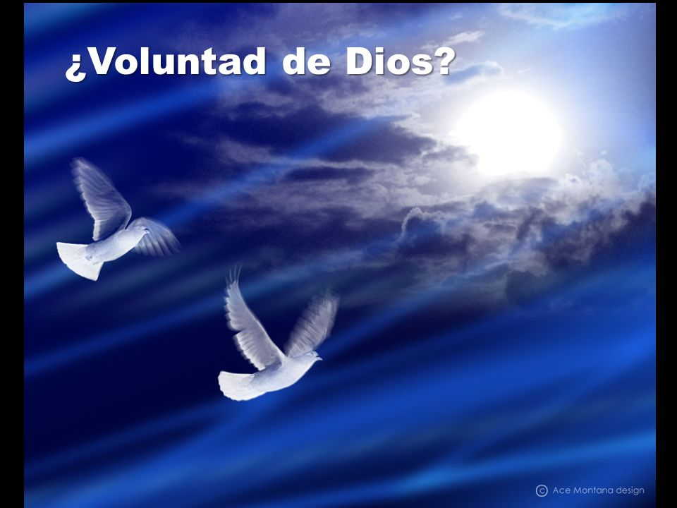 ¿Voluntad de Dios
