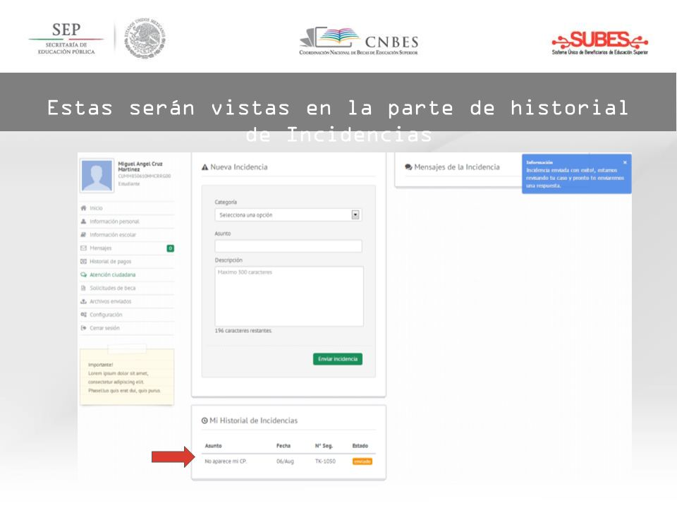 Estas serán vistas en la parte de historial de Incidencias
