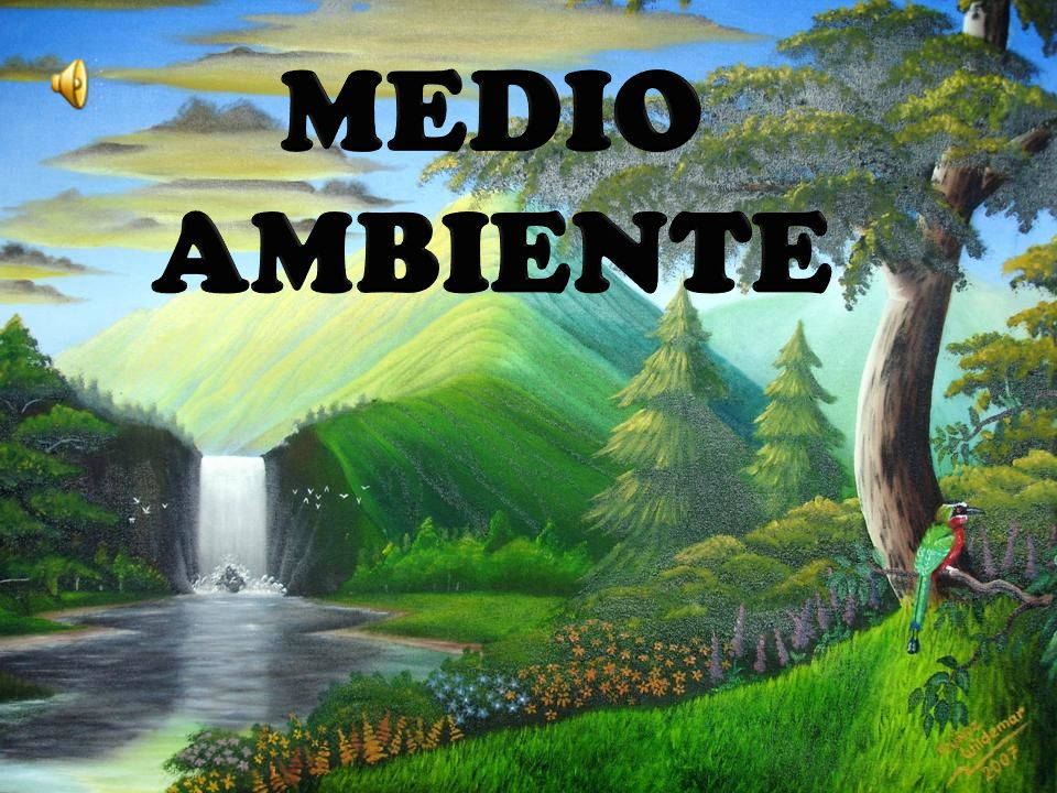 El Medio Ambiente: Ppt Video Online Descargar