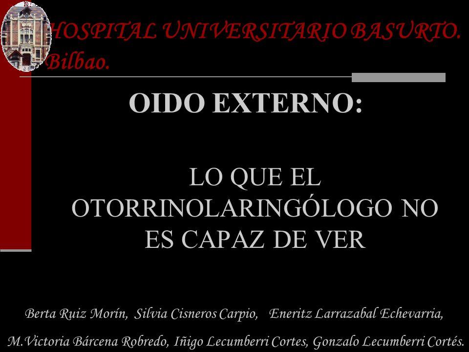 HOSPITAL UNIVERSITARIO BASURTO. Bilbao. - ppt descargar