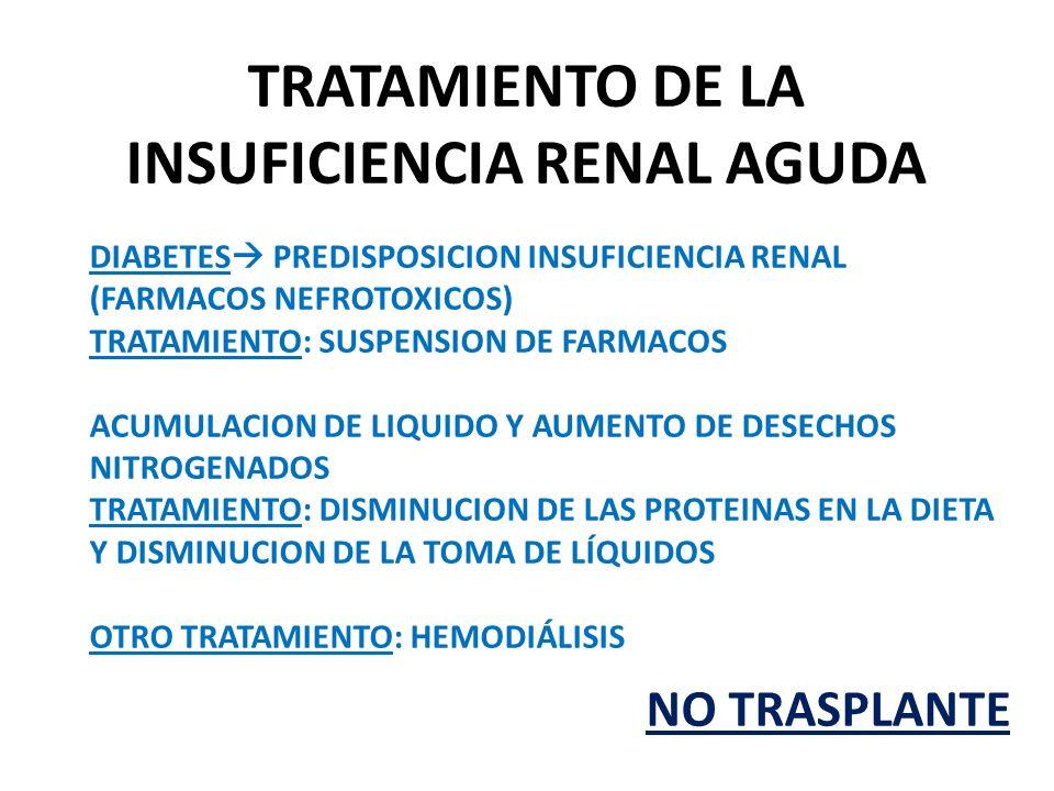 INSUFICIENCIA RENAL AGUDA Y CRÓNICA - ppt video online descargar
