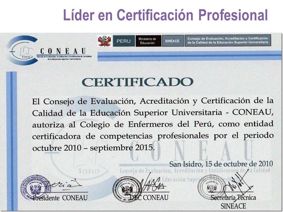 Dorable Certificación Profesional Motivo - Imágenes de Anatomía ...