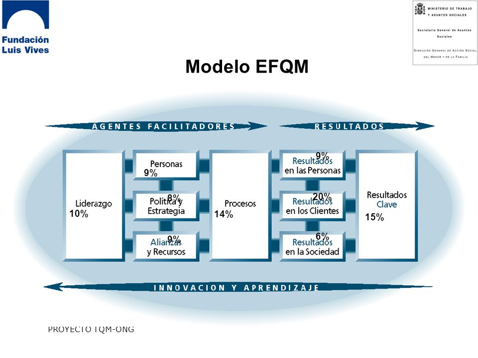 Modelo EFQM 9% 9% 8% 20% 10% 14% 15% 9% 6% PROYECTO TQM-ONG