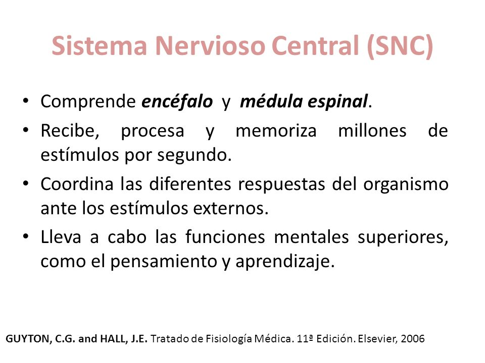 Anatomía y fisiología del Sistema Nervioso Central - ppt video ...