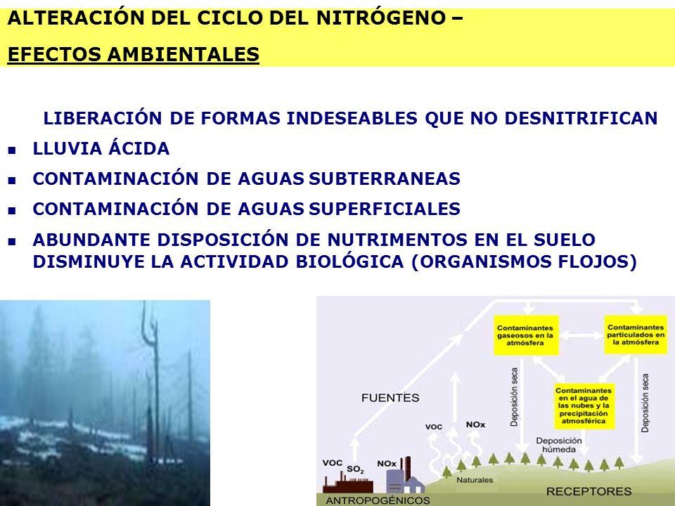 Agroecología Unidad Iv Los Ciclos Biogeoquímicos Ppt Descargar