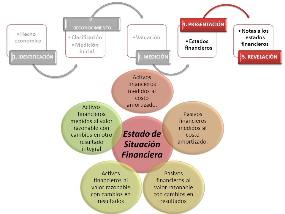 Notas a los estados financieros Estado de Situación Financiera